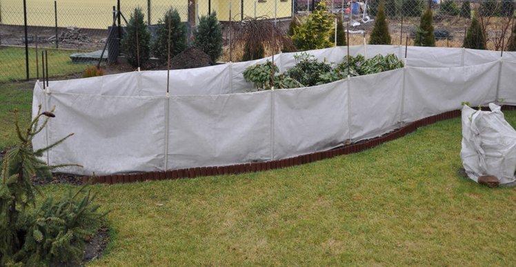 Parawan - zabezpieczanie roślin na zimę