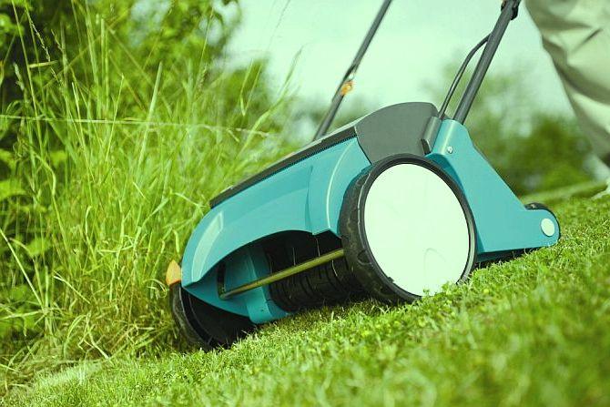 Pięlegnacja trawnika