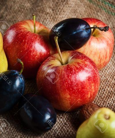 Polecamy uprawiać drzewa owocowe każdemu! Polecamy naszą ciekawą ofertę drzew owocowych! Gwarantujemy wysoką jakość i rozsądne ceny!