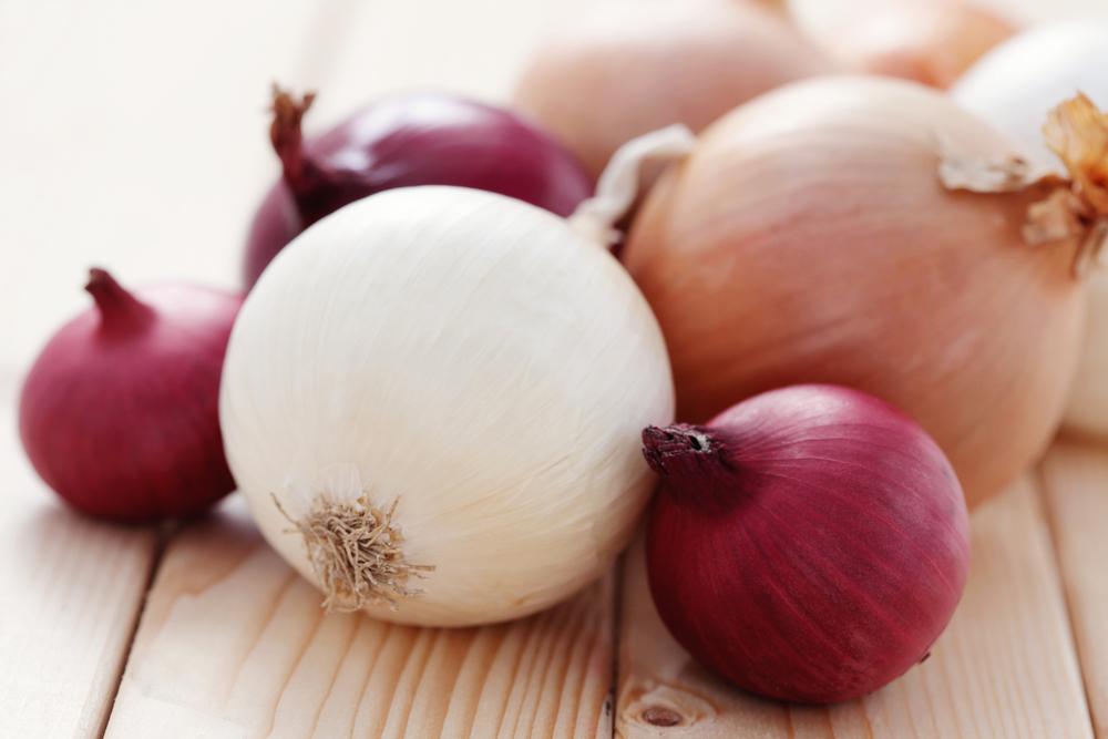 Udana uprawa cebuli tylko z naszymi nasionami cebuli! Gwarantujemy najwyższą jakość!